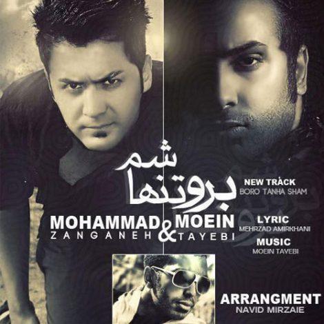 Moein Tayebi - 'Boro Tanha Sham (Ft Mohammad  Zanganeh)'