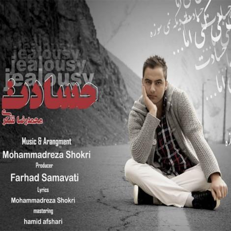 Mohamad Reza Shokri - 'Hesadat'