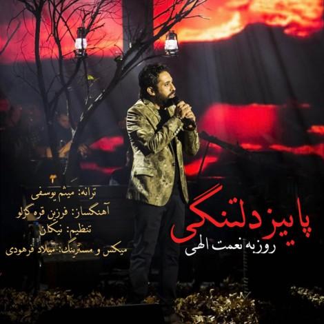 Roozbeh Nematollahi - 'Paeeze Deltangi'
