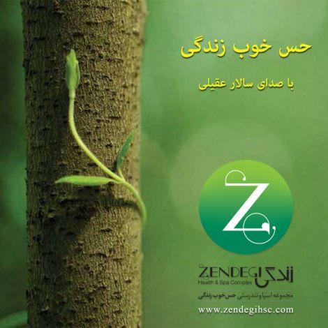 Salar Aghili - 'Hesse Khoobe Zendegi'