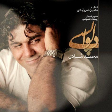 Mohammad Moradi - 'Delvapasi'
