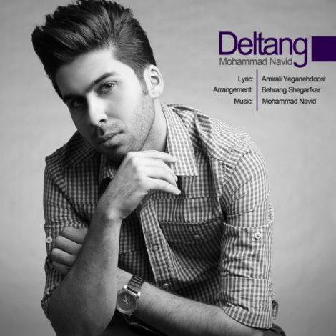 Mohammad Navid - 'Deltang'