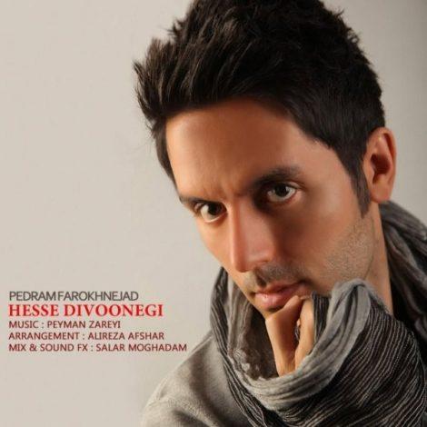 Pedram Farokhnejad - 'Hesse Divoonegi'