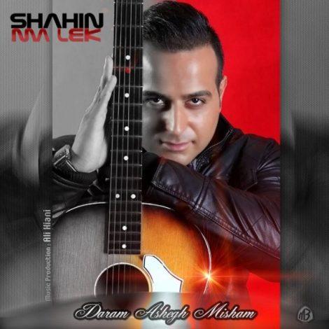 Shahin Malek - 'Daram Ashegh Misham'