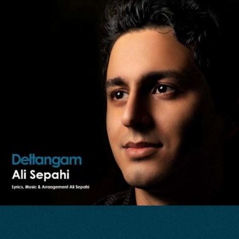 Ali Sepahi - 'Deltangam'