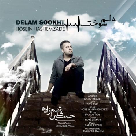 Hossein Hashemzade - 'Delam Sookht'