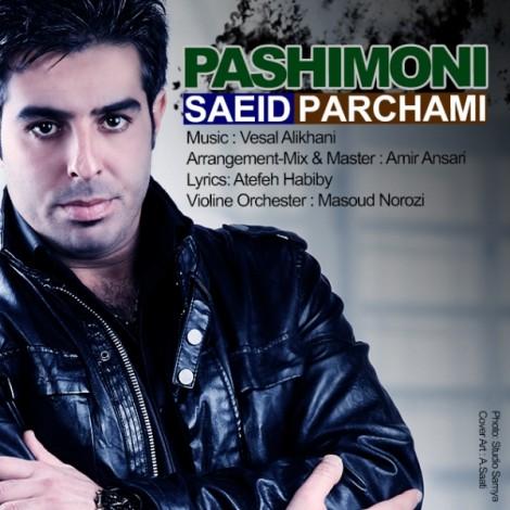Saeid Parchami - 'Pashimoni'