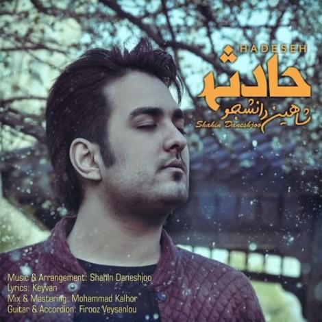 Shahin Daneshjoo - 'Hadese'
