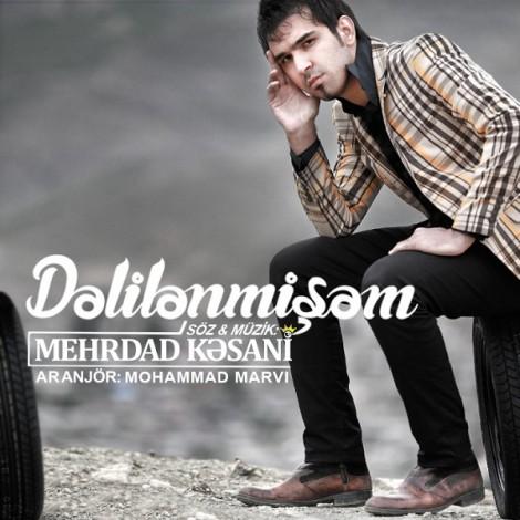 Mehrdad Kasani - 'Dalilanmisham'