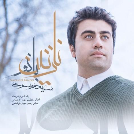 Saeed Mousavi - 'Nazanin Banou'