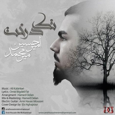 Amir Hossein Mir Mohammad - 'Tak Derakht'