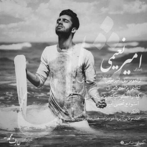Amir Naeimi - 'Shal'