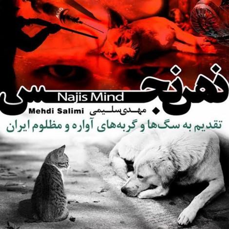 Mehdi Salimi - 'Zehne Najes'