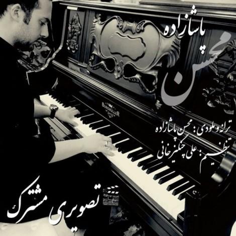 Mohsen Pashazadeh - 'Tasviri Moshtarek'