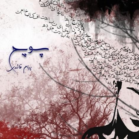Payam Ghaedi - 'Pooch'
