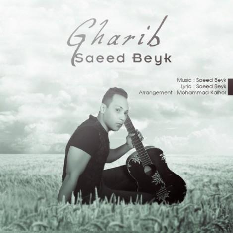 Saeed Beyk - 'Deltangi'
