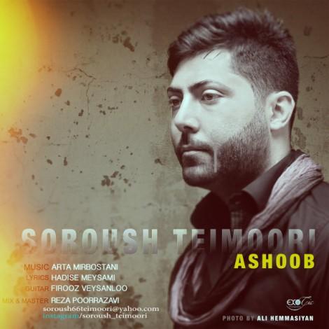 Soroush Teimoori - 'Ashoob'