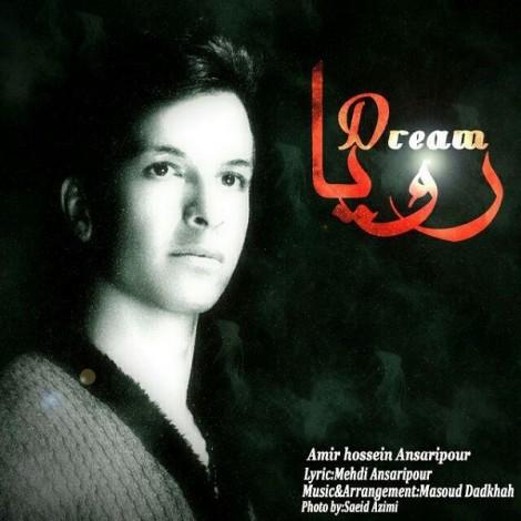 Amir Hossein Ansaripour - 'Roya'