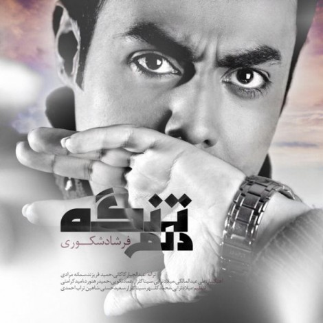 Farshad Shakouri - 'Kash Bedooni'