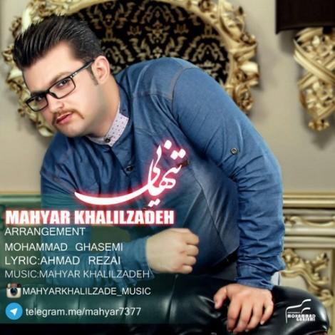 Mahyar Khalilzadeh - 'Tanhaei'