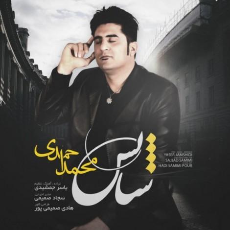 Mohammad Ahmadi - 'Shans'