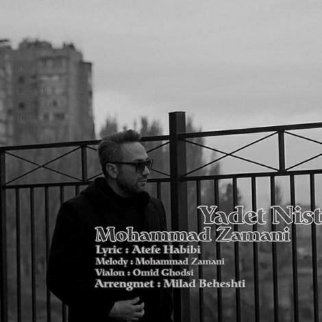 Mohammad Zamani - 'Yadet Nist'