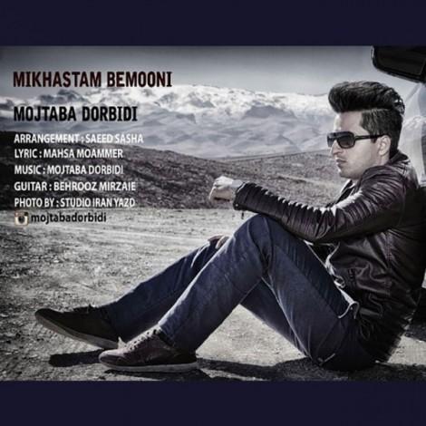 Mojtaba Dorbidi - 'Mikhastam Bemooni'