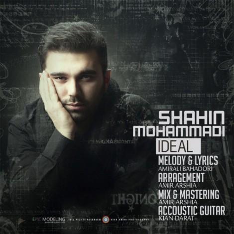 Shahin Mohammadi - 'Ideal'