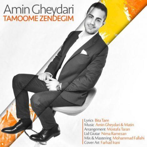 Amin Gheydari - 'Tamoome Zendegim'