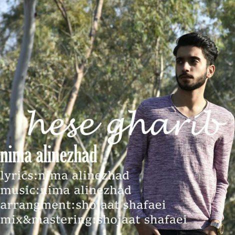 Nima Alinejad - 'Hesse Gharib'