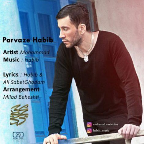 Mohamad Mohebian - 'Parvaze Habib'