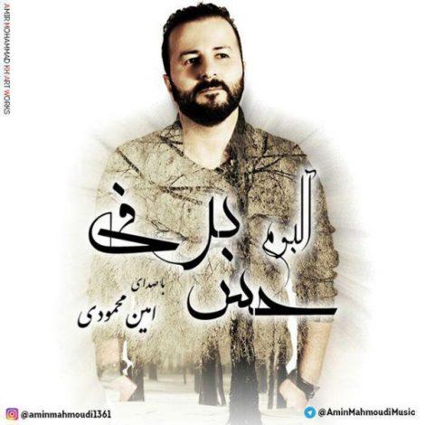 Amin Mahmoudi - 'Vase Chi Bood'
