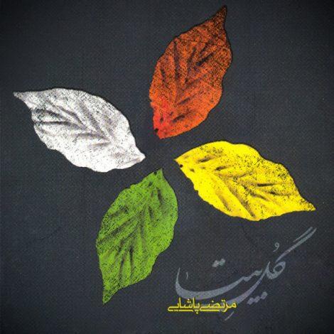 Morteza Pashaei - 'Parandeh 1'