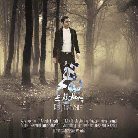 Peyman Zarei - 'Tavahom'