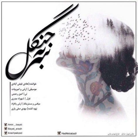 Hadi Feizabadi - 'Sar Be Janagal'