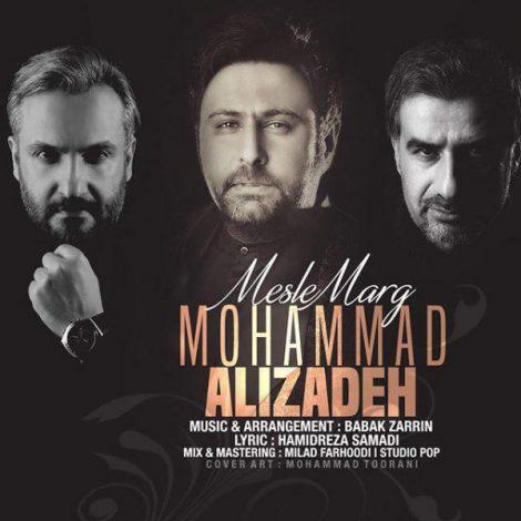 Mohammad Alizadeh - 'Mesle Marg'