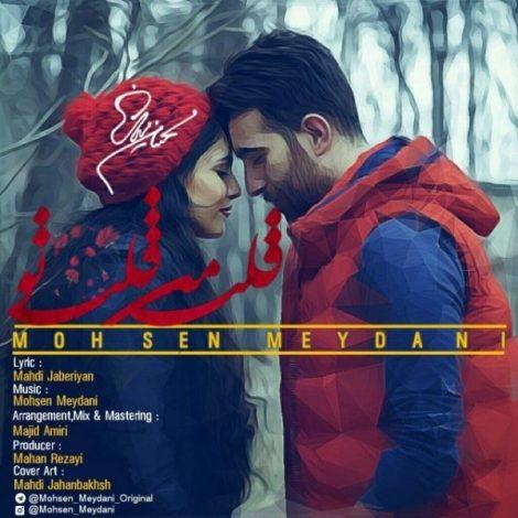 Mohsen Meydani - 'Ghalbe Man Ghalbe To'