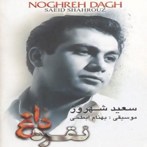 Saeid Shahrouz - 'Gonahe Man'