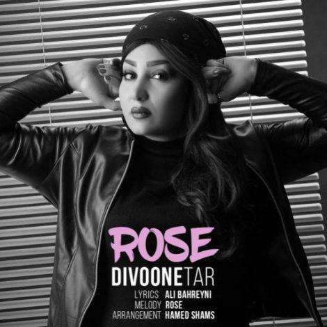 Rose - 'Divoone Tar'