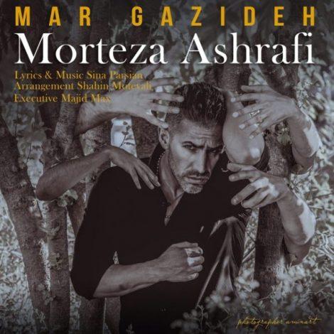 Morteza Ashrafi - 'Mar Gazideh'
