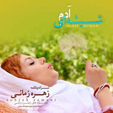 Zohreh Zamani - 'Nemibini Cheghad Khasteam'