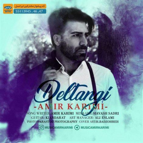 Amir Karimi - 'Deltangi'