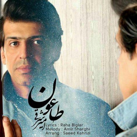 Amir Sharghi - 'Taaoon'