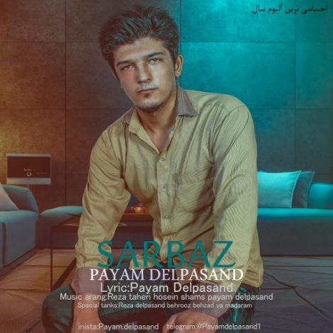 Payam Delpasand - 'Faze Tanhaye'