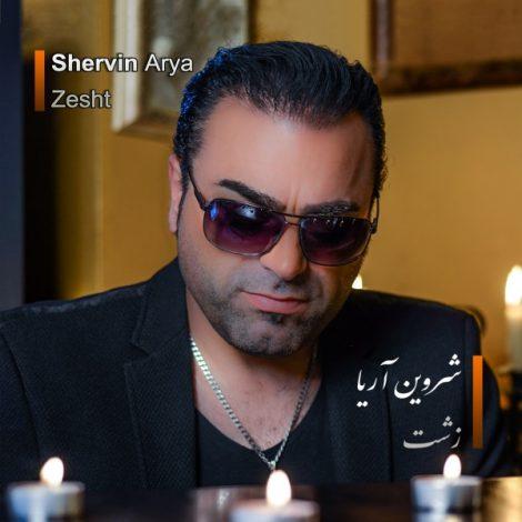 Shervin Arya - 'Zesht'