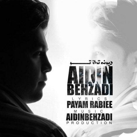 Aidin Behzadi - 'Divoonetar Az To'