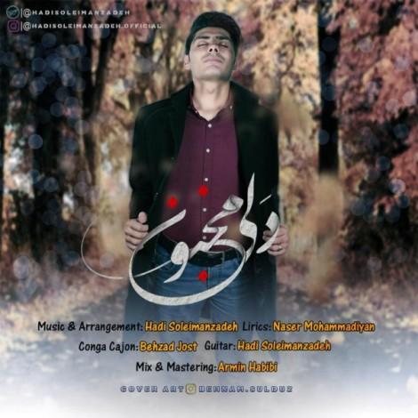 Hadi Soleimanzadeh - 'Dali Majnoon'