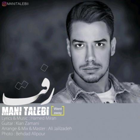 Mani Talebi - 'Raft'