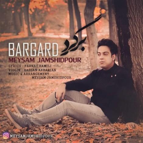 Meysam Jamshidpour - 'Bargard'