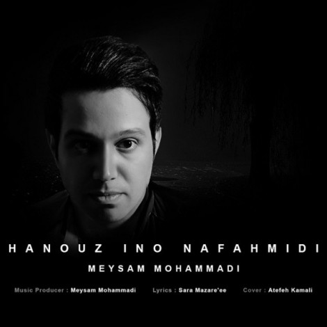 Meysam Mohammadi - 'Hanouz Ino Nafahmidi'